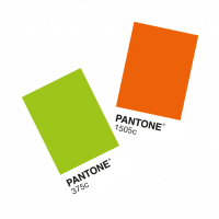Pantone-Colour-Swatch-Packaging